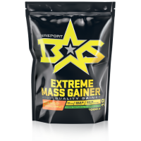 BS EXTREME MASS GAINER (1кг)